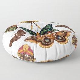 Moth Wings III Floor Pillow