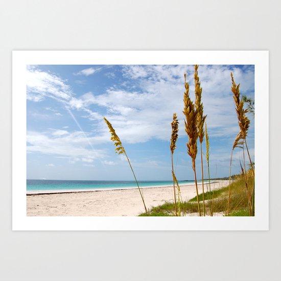 Mark Your Piece of Paradise Art Print