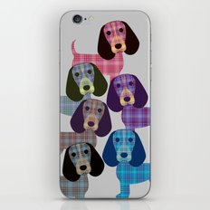 Beagle Plaid iPhone & iPod Skin