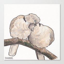 Bird no. 323: Snuggs Canvas Print