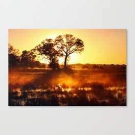 Morning in Africa Canvas Print