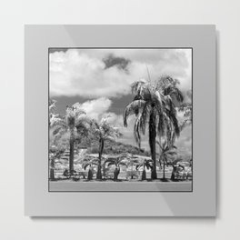 Palm Trees in the Suburbs Metal Print