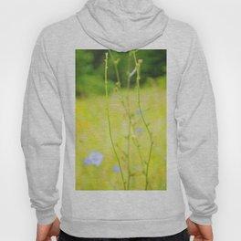 Cornflowers Hoody