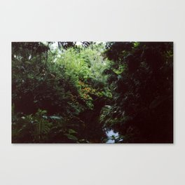 Swiss Family Treehouse Canvas Print