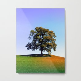 Posing tree on a hill in summertime Metal Print