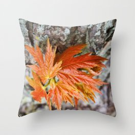 Leaf Sprouts Throw Pillow