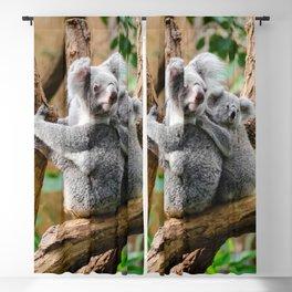 Koala mom and child Blackout Curtain