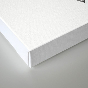 Geometric power Canvas Print
