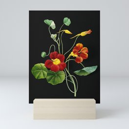Vintage Monks Cress Botanical Illustration on Black (Portrait) Mini Art Print