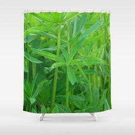 Flowers Izby Garden 3 Shower Curtain