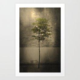 Once Upon a Tree Art Print