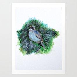 New York Winte Sparrow Art Print