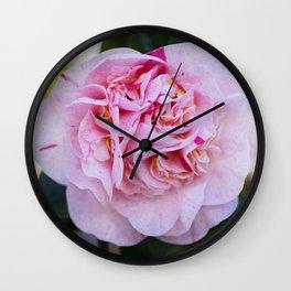 Strawberry Blonde Camellia Bloom Wall Clock