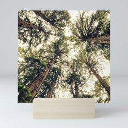 Earth's Eye View Mini Art Print
