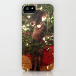 Curiousity Killed The Cat iPhone Case