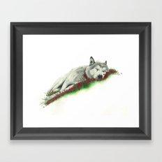 Wolf. Framed Art Print