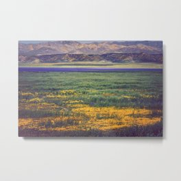 The Artistry of Nature Metal Print