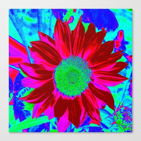 Sunflower fantasy Colors Canvas Print