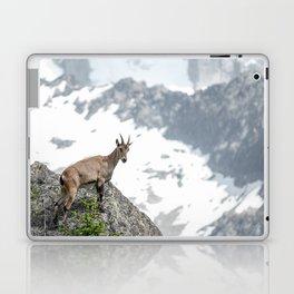 Alpine ibex Laptop & iPad Skin
