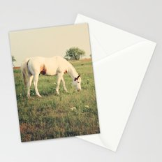 It's not a unicorn! It's a white horse! Stationery Cards