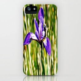 Wild iris on Seal Island, Nova Scotia iPhone Case