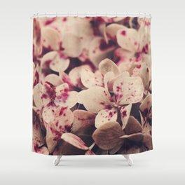 hydrangea - pink freckles Shower Curtain
