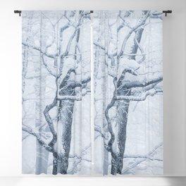 Frozen snowy tree Blackout Curtain