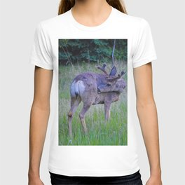 Mule Deer scratching an itch in Jasper National Park T-shirt