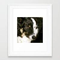 best friend Framed Art Prints featuring Best Friend by Layton Zimmages