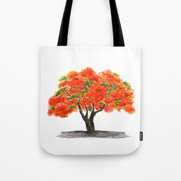 flame of the forest tree Tote Bag