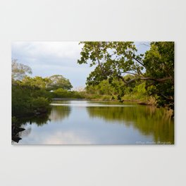 Peace, at it's best Canvas Print