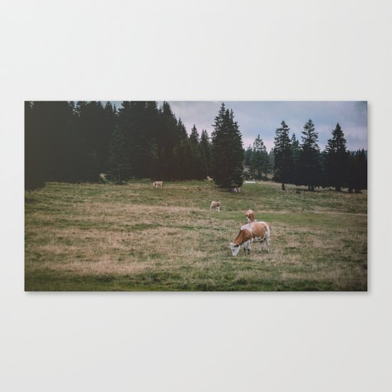 The Reality Canvas Print