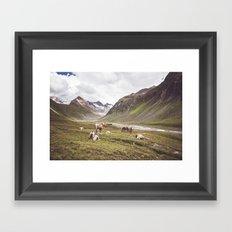 Tyrolean Haflinger horses I Framed Art Print