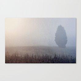Lone Cedar Canvas Print