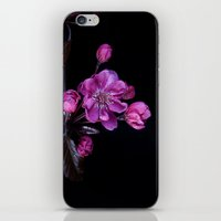 cherry blossom iPhone & iPod Skins featuring Cherry Blossom by CreativeByDesign