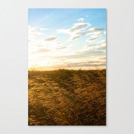 100823.002 Canvas Print