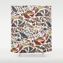 Moths of North America Pattern Shower Curtain