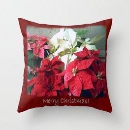 Mixed color Poinsettias 3 Merry Christmas P5F5 Throw Pillow