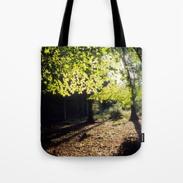 The Woods in Spring Tote Bag