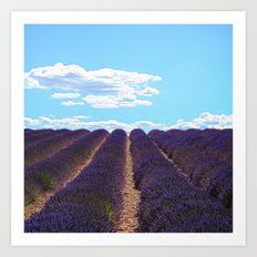 PROVENCE - Lavender | France | Travel | Summer | Purple | Nature | Landscape Art Print