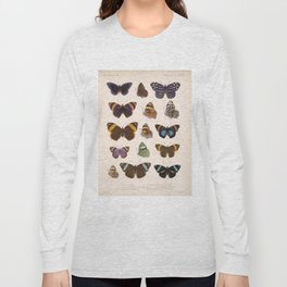 Vintage Hand Drawn Scientific Illustration Insects Butterfly Anatomy Colorful Wings Long Sleeve T-shirt
