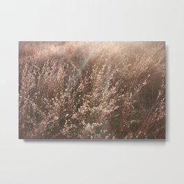 Field's of Rose Gold Metal Print
