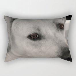 Windows to the Soul Rectangular Pillow