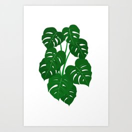 Hand Painted Monstera Deliciosa Tropical Houseplant Art Art Print