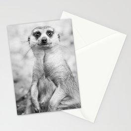 Meerkat portrait Stationery Cards