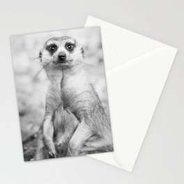 Meerkat portrait Stationery Cards