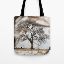 Framed by Reeds Tote Bag