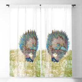 Echidna Explorer Blackout Curtain