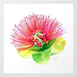 Red Flower / Ohia Lehua Art Print
