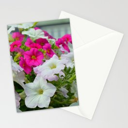 Pink and white petunias Stationery Cards